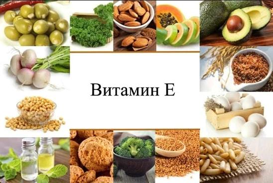 Витамин Е в чем содержится